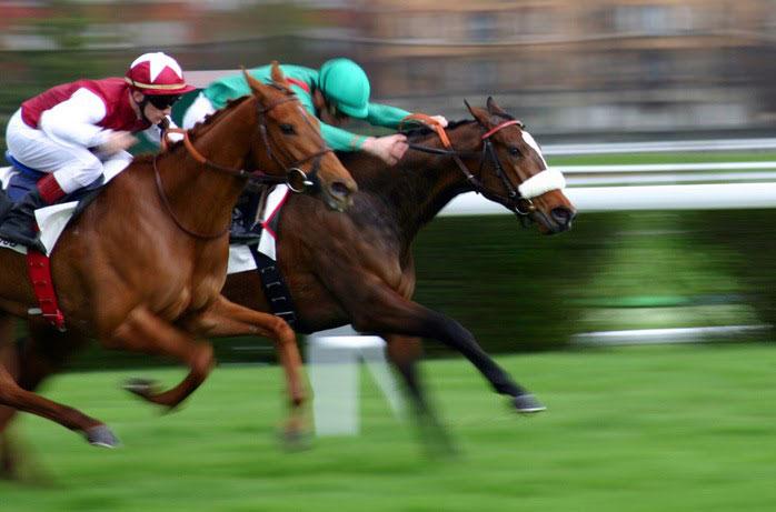 caballos de carreras