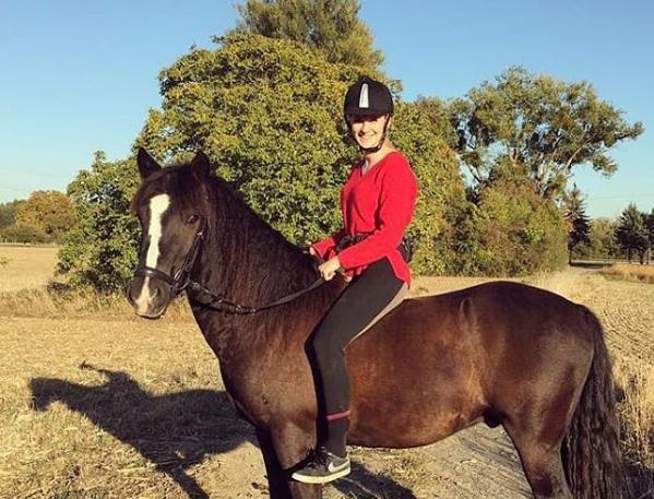 caballo bardigiano