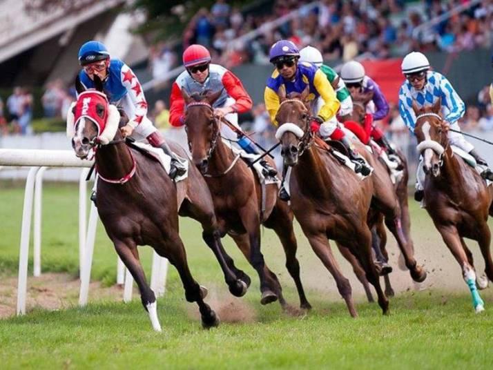 Mejores películas sobre carreras de caballos