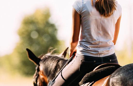 que es equitación