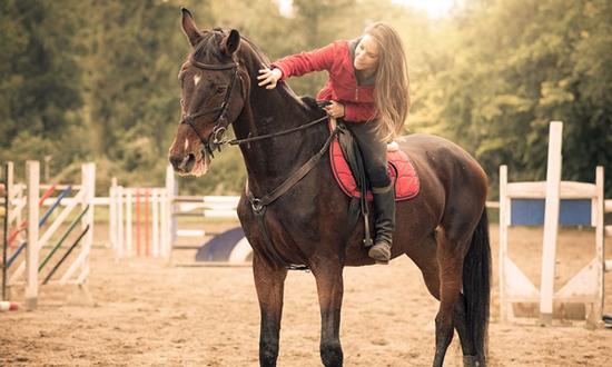 gadgets para caballos